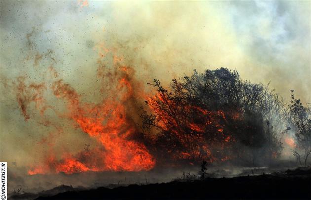 100 هکتار از اراضی پارک ملی گلستان در آتش سوخت