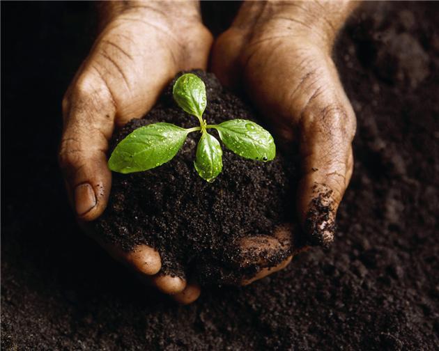 لایحه خاک روی میز هیات دولت/ دستگاه ها به وظایف خود برای حفظ منابع خاک عمل کنند