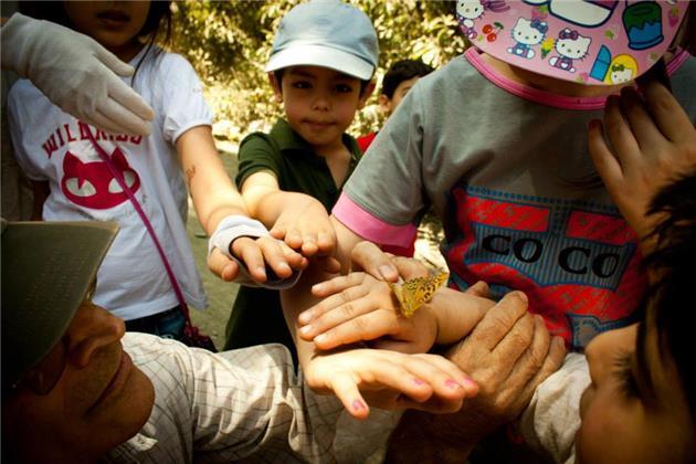 اینجا کودکان، با طبیعت صلح می کنند
