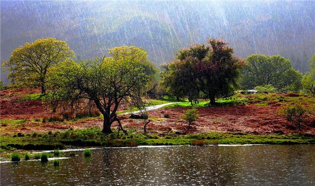 ورود سامانه بارشی به کشور و بروز گردوغبار در استان های جنوبی و غربی