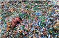 هر سال بیش از ۳۳۰ میلیون تن پلاستیک در جهان تولید میشود