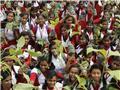 کاشت ۲۲۰ میلیون اصله درخت در هند در یک روز