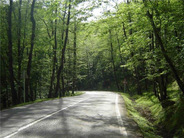 جنگل دالخانی، دالان سبز بهشت در رامسر