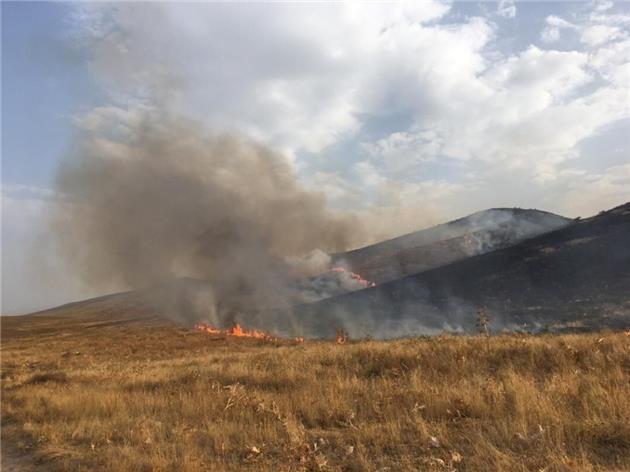 ۳۱۷ هکتار زمین در پارک ملی تندوره خاکستر شد