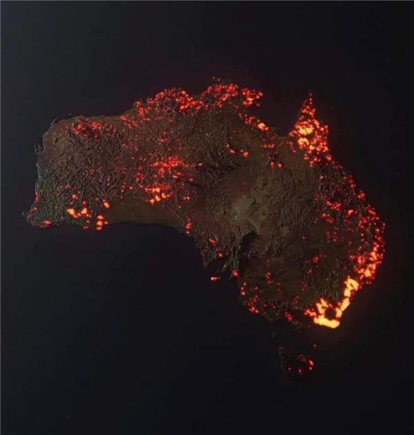 ۲۰ درصد از جنگلهای استرالیا در آتش سوختهاند