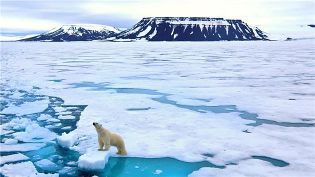 گرم شدن قطب شمال و آینده نامعلوم ساکنان بومی