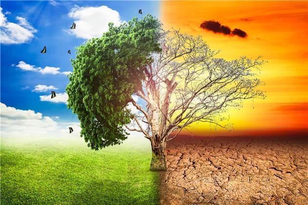 تدبیر حیاتی برای حیات دوباره طبیعت