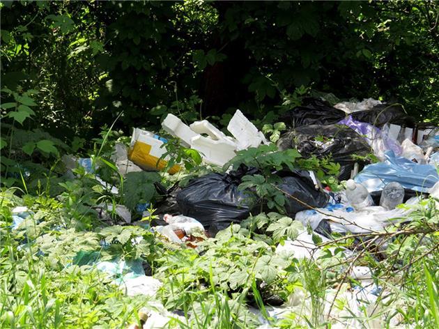آیا لایحه «کاهش مصرف کیسههای پلاستیکی» به داد طبیعت میرسد؟