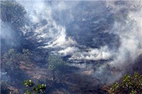 خطر آتشسوزی بیخ گوش جنگلها و مراتع کشور