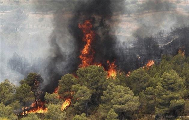 چرا آتشسوزی جنگلهای زاگرس مهم است؟